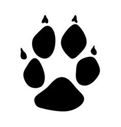 Racoon dog footprint vector