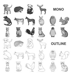 Realistic animals monochrom icons in set vector