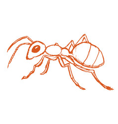 Red ant from forest vector