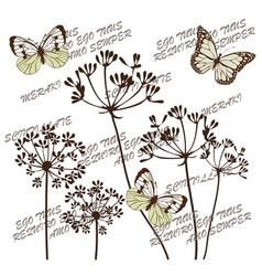 botanical flowers vector image