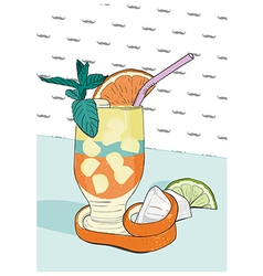Cocktail with orange peel Hand drawn vector image vector image