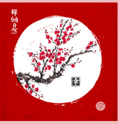 sakura blossom in white circle on red background vector image vector image