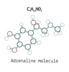 C9H13NO3 adrenaline molecule vector