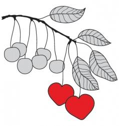 Cherry branch vector