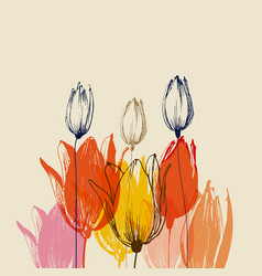 Colorful tulip flower bouquets border decorations vector