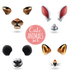 cute animal faces icon set vector image