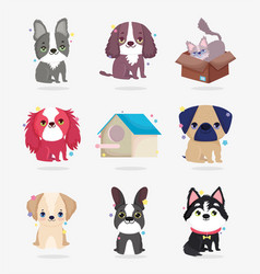 cute dogs and cat wooden house domestic cartoon vector image