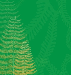 Floral Background with Fern Fronds vector image