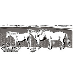 horses walking vector image