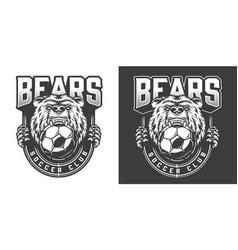 football team angry bear mascot emblem vector image