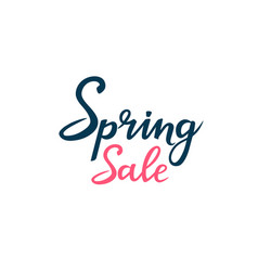 hand drawn lettering spring sale isolated on vector image