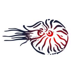 Seashell nautilus vector