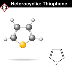 Thiophene five-membered heterocyclic ring vector