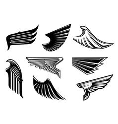 Black heraldic and tribal wings elements vector image
