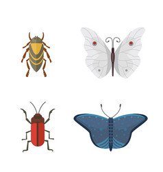 set of different insects in cartoon style vector image vector image