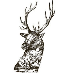 stylized deer head with nature landscape vector image