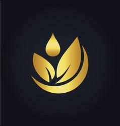 organic green leaf bio gold logo vector image vector image