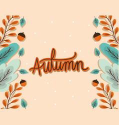 Autumn blue and brown leaves with acorns frame vector