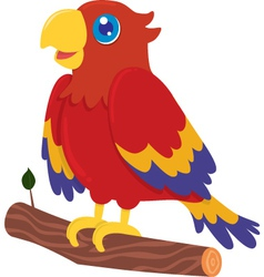Cute Parrot Cartoon vector