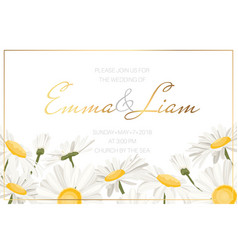 daisy chamomile floral wedding invite white yellow vector image