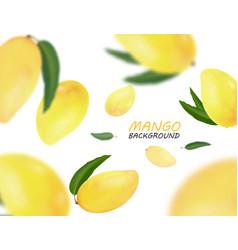 Falling mangoes fruit isolated on white background vector