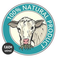 label of cute bull vector image