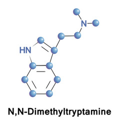 nn-dimethyltryptamine is a psychedelic vector image