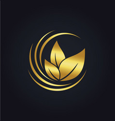 Organic green leaf botany gold logo vector