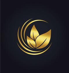 organic green leaf botany gold logo vector image