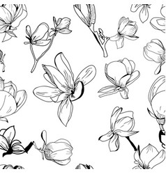pattern hand drawn collection magnolia flower vector image