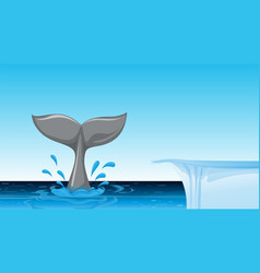 whale tail on the ocean vector image
