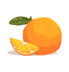 Fresh Full Garden Orange WIth Leaf And Orange vector image vector image