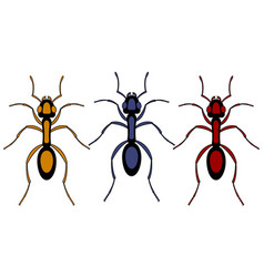 Ant insect set vector