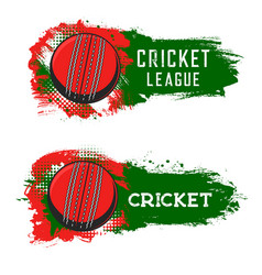 Cricket league game or tournament icons vector