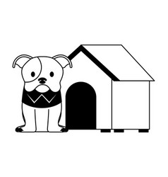 Cute dog pet and house vector