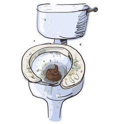 Dirty toilet isolated vector