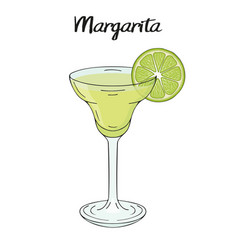 Margarita cocktail with lime decorations for vector