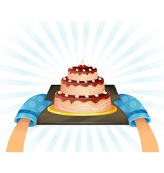 Sweet chocolate cake vector image