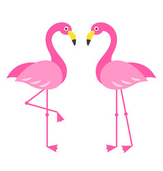 Two pink flamingo birds isolated on white vector