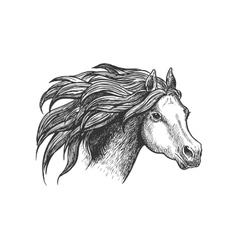 Graceful running appaloosa horse vintage icon vector image vector image