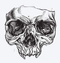Skull drawing vector