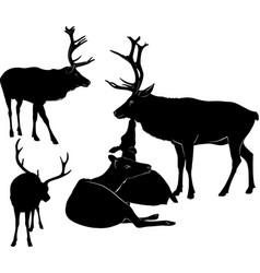 deer silhouette set vector image