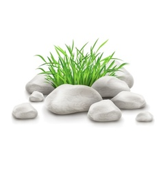 green grass in stones as vector image