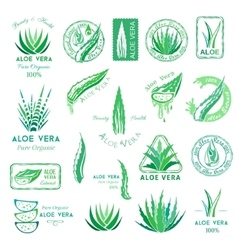 Aloe vera design elements Stamps and badges vector image