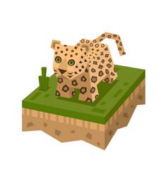 Cartoon 3d isometric leopard vector