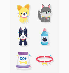 cute little dogs food and collar domestic cartoon vector image