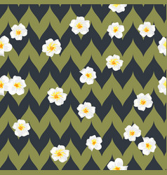 tropical flowers seamless pattern exotic plumeria vector image