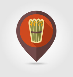 asparagus flat pin map icon vegetable vector image vector image