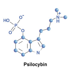 psilocybin psychedelic compound of mushrooms vector image vector image