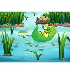 A playful frog and turtle at the pond vector